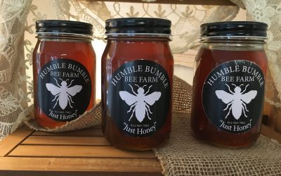 Bees, Honey, and Allergies